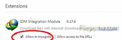 """How to Enable """"Internet Download Manager Integration Module"""