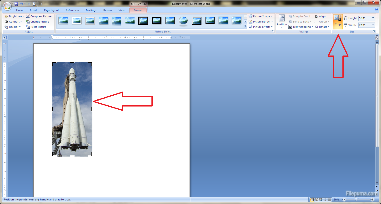 How to crop a photo in Microsoft Word 2007? | News – Filepuma com